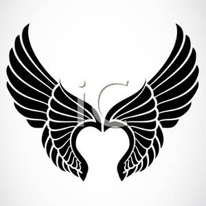 300x300 And White Angel Wings