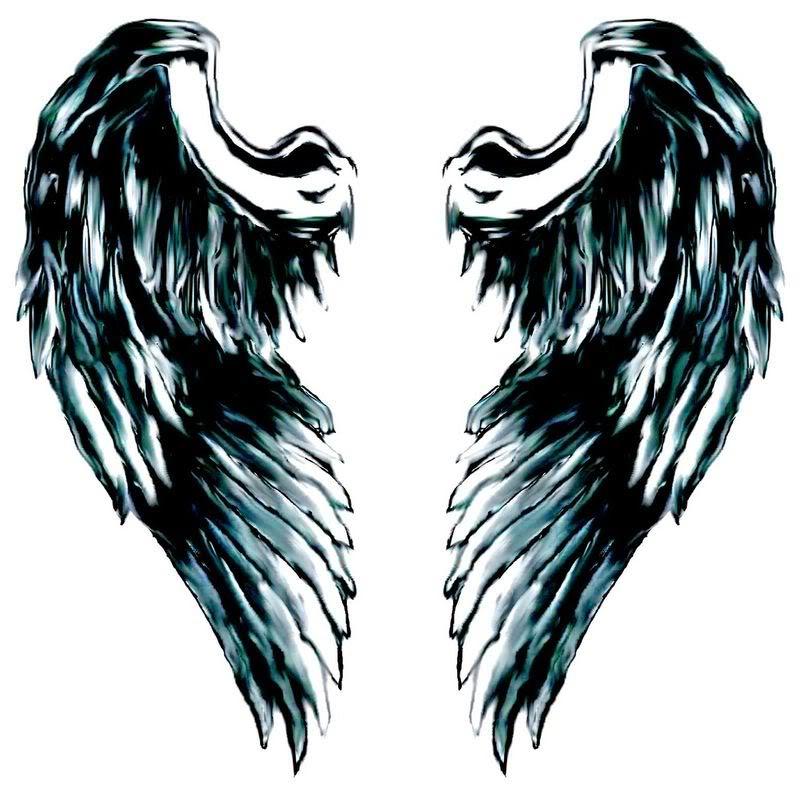 800x798 Angel Wing Logo