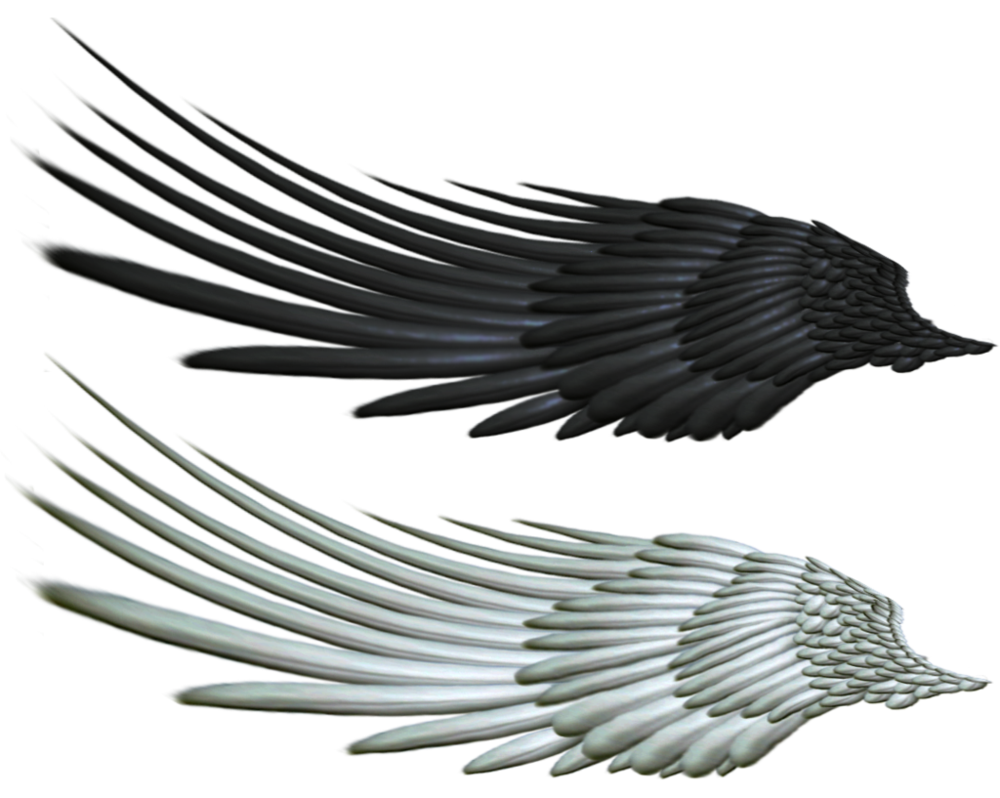 1000x798 Good And Evil Angel Wing Png 2 By Thy Darkest Hour