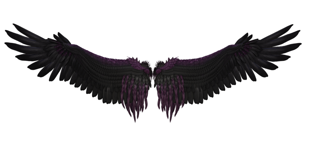 1024x512 Wings Png Images Free Download, Angel Wings Png