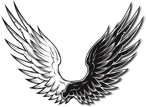 493x364 Wings Free Vector Download (970 Free Vector) For Commercial Use