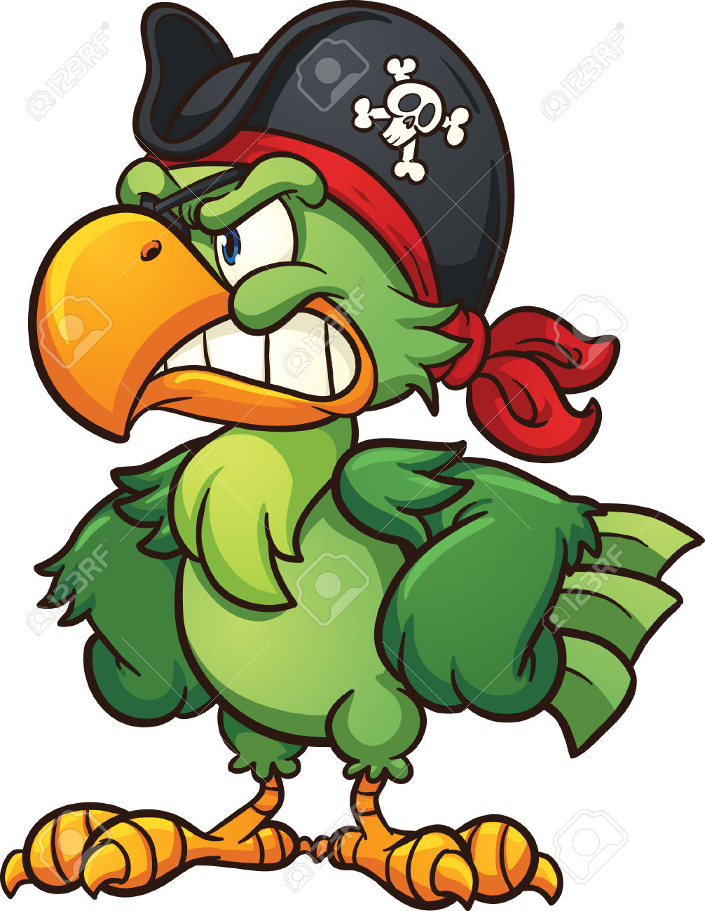 1006x1300 Pirate Bird Clipart