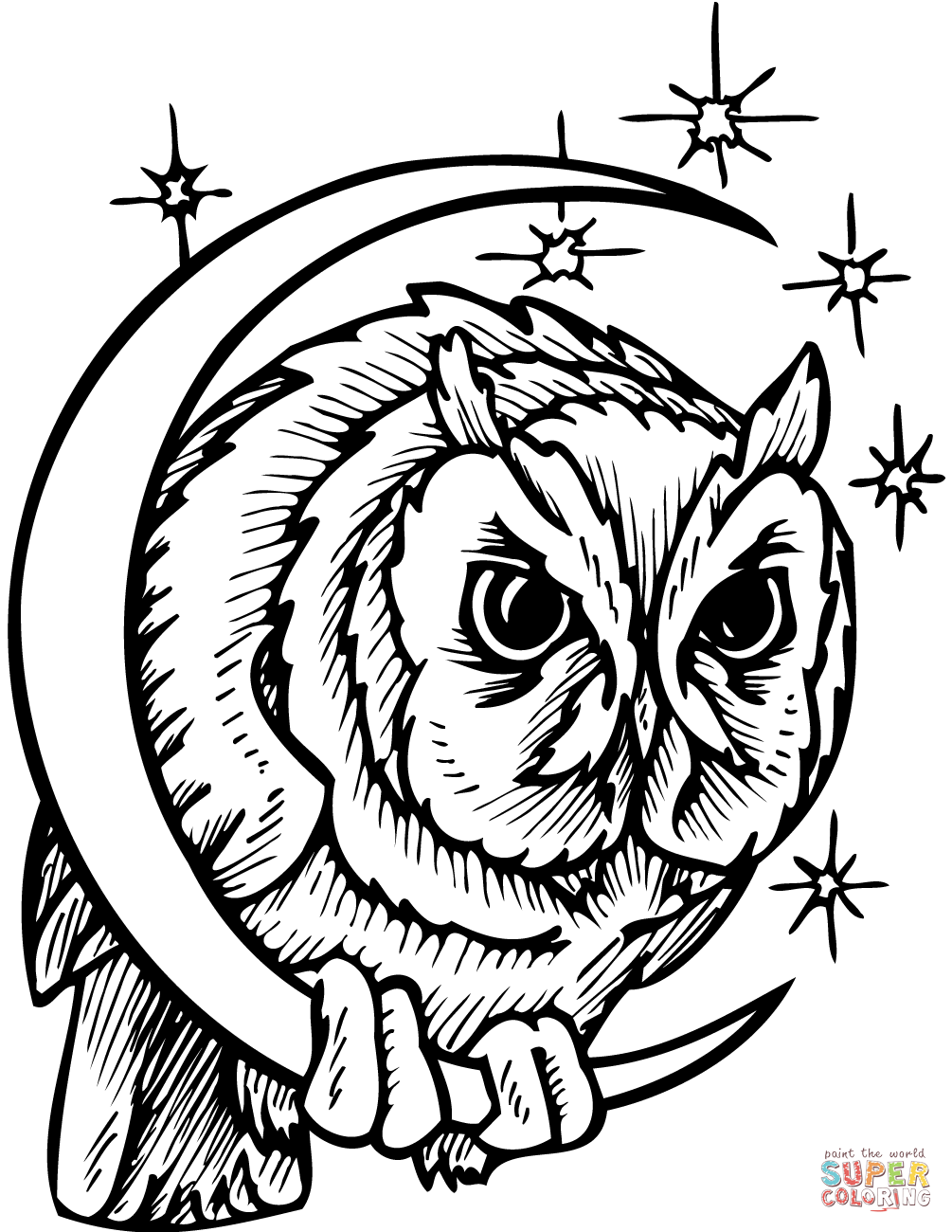 1005x1300 Nocturnal Animals Coloring Pages Free Printable Pictures