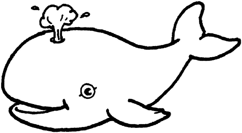 1024x565 Ocean Animals Coloring Pages