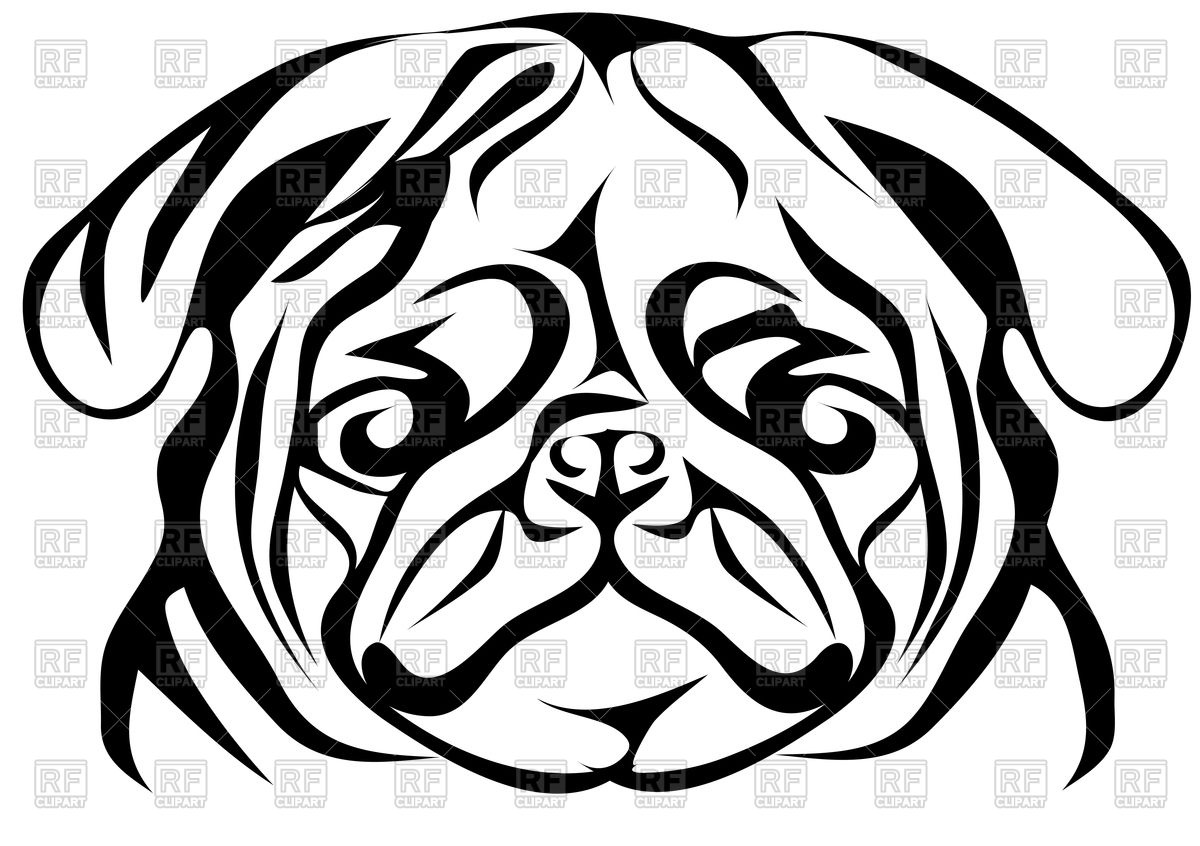 Pug Face Line Drawing : Animal face clipart black and white free download best