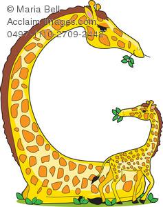 237x300 G Is For Giraffes