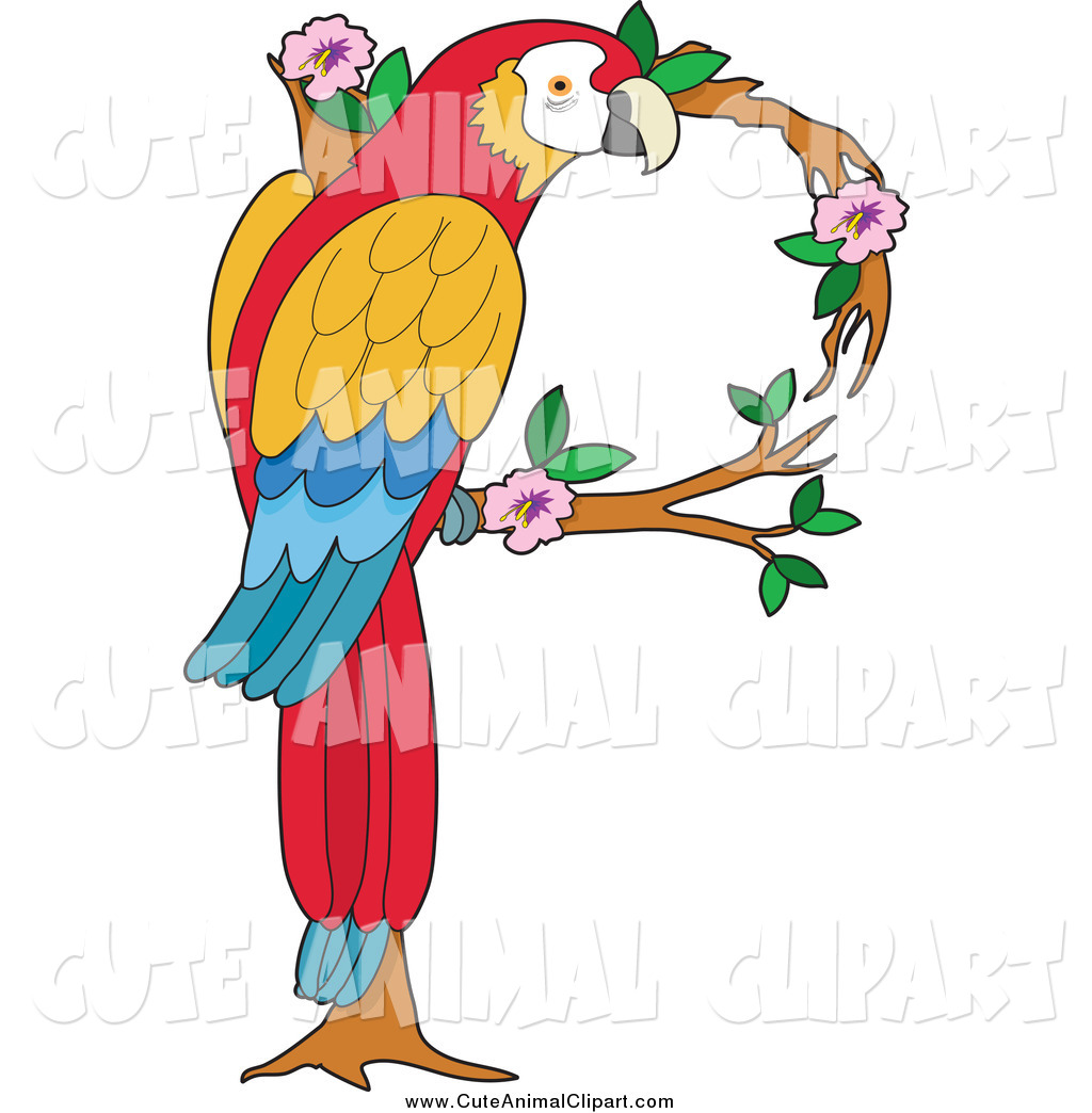 1024x1044 Vector Clip Art Of A Scarlet Macaw Forming A Letter P By Maria