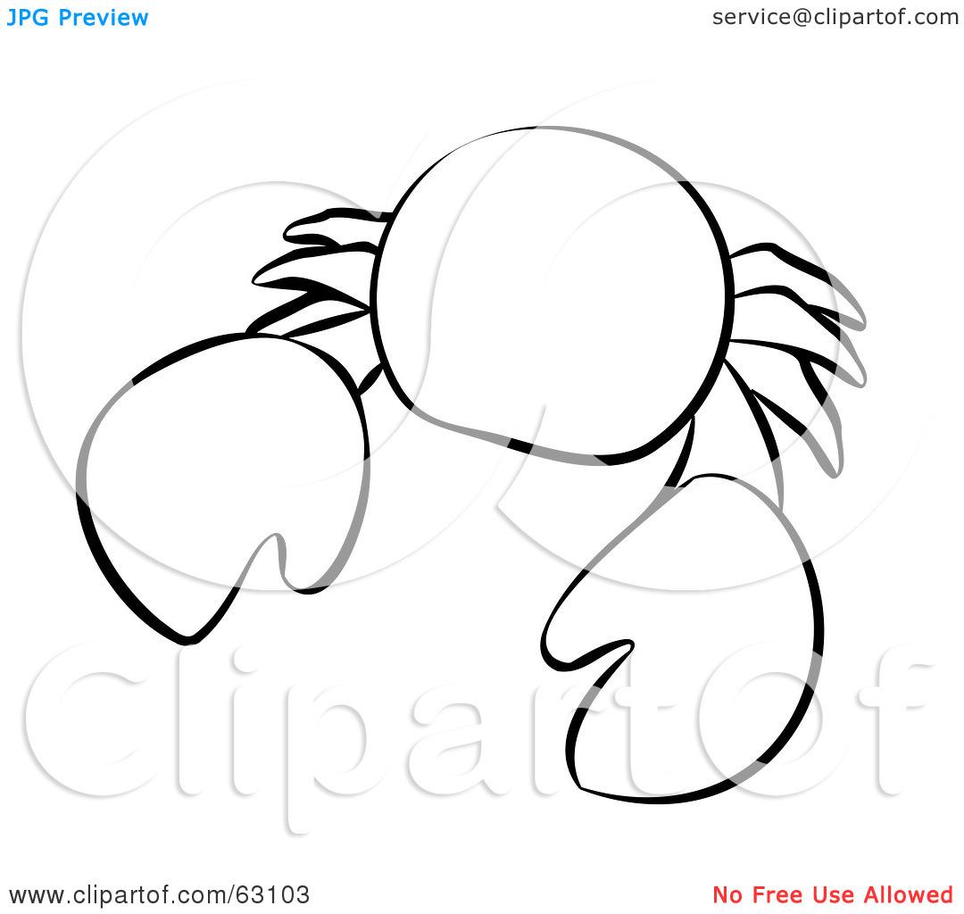 1080x1024 Ocean Animals Clip Art Black And White Clipart Panda