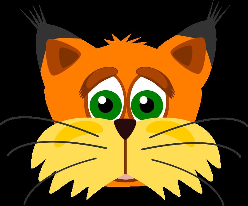 800x664 Lynx Clip Art
