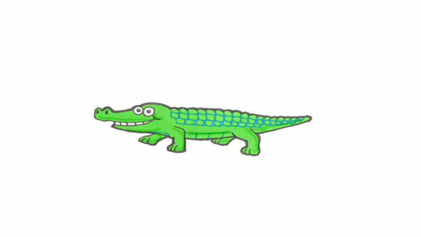 852x480 Crocodile Alligator Open His Mouth. Animated Motion Graphic With