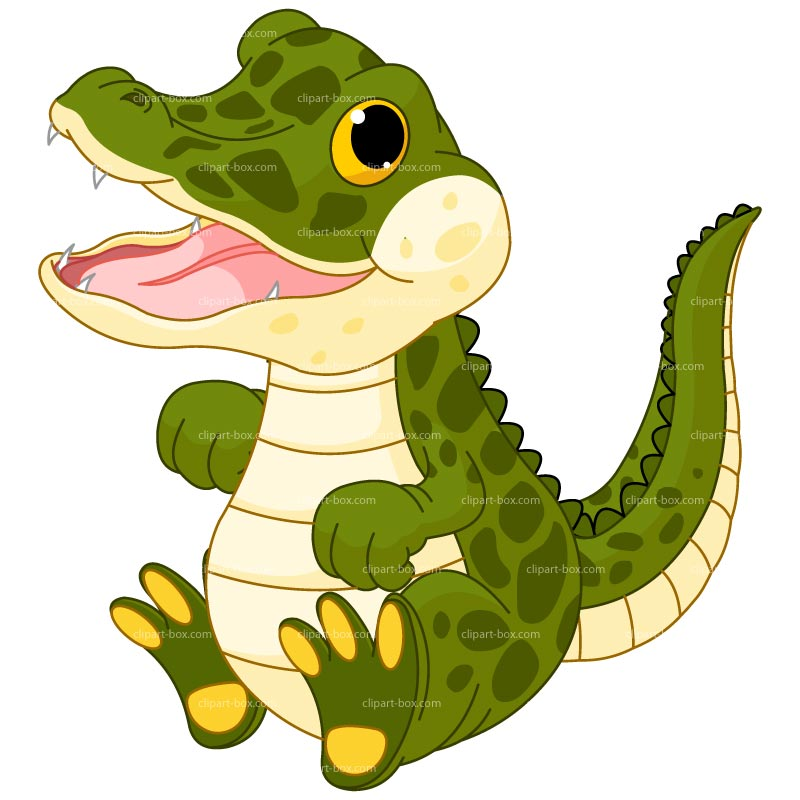 800x800 baby gator clipart