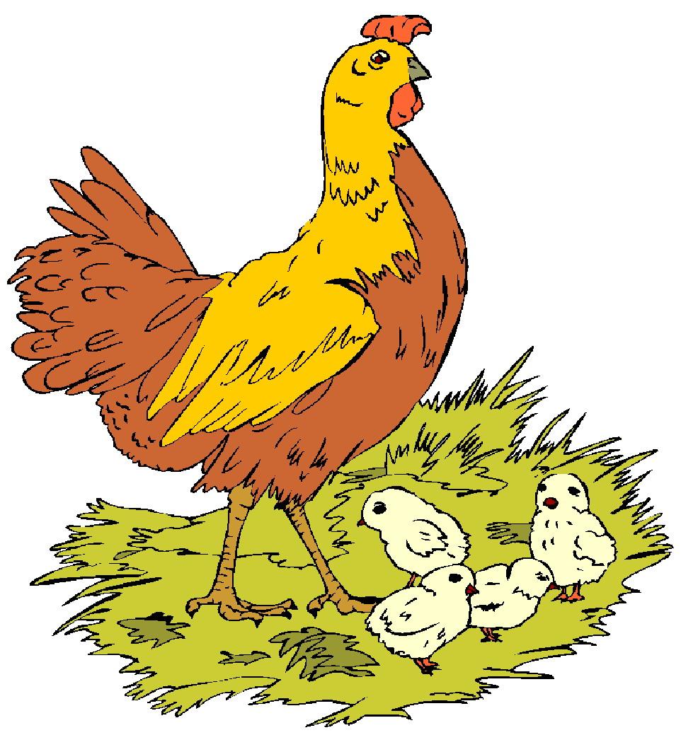 962x1039 Clip Art Chickens