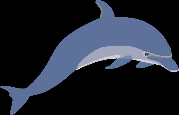 600x386 Dolphin 3 Clip Art