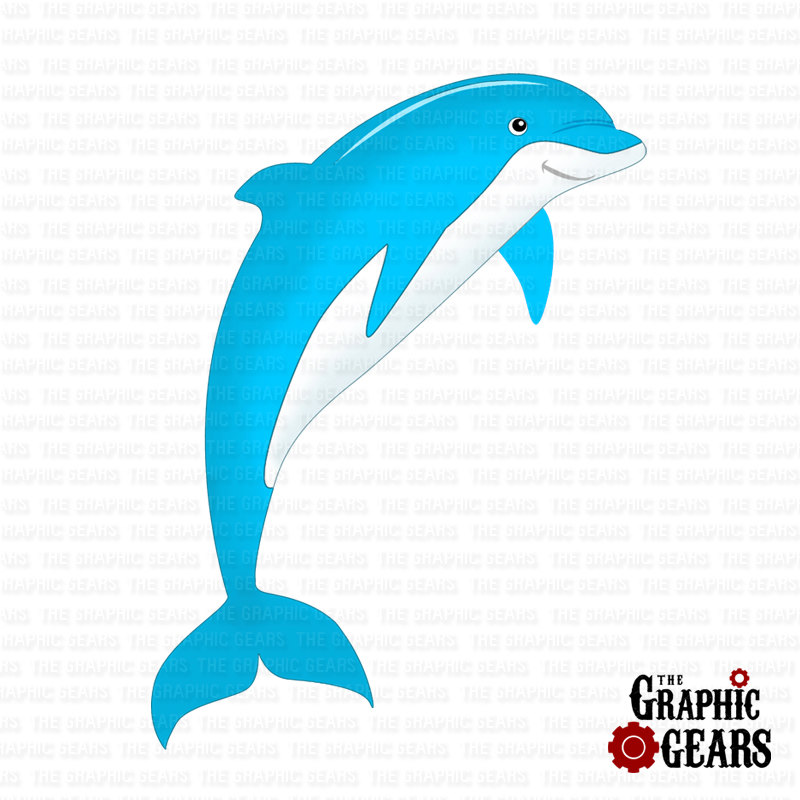 800x800 Bottlenose Dolphin Clipart Animation