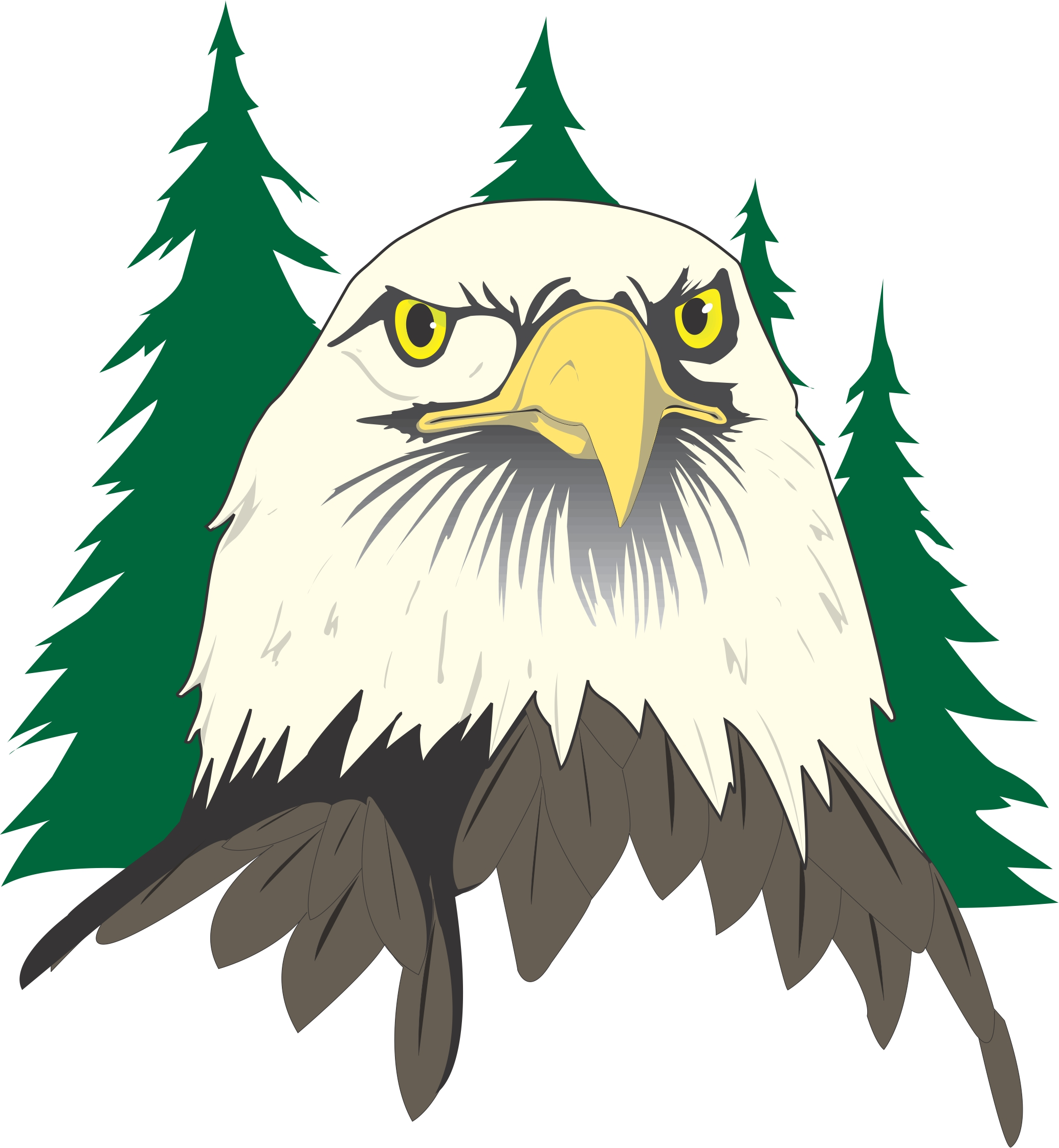2070x2243 Cartoon Pictures Of Eagles