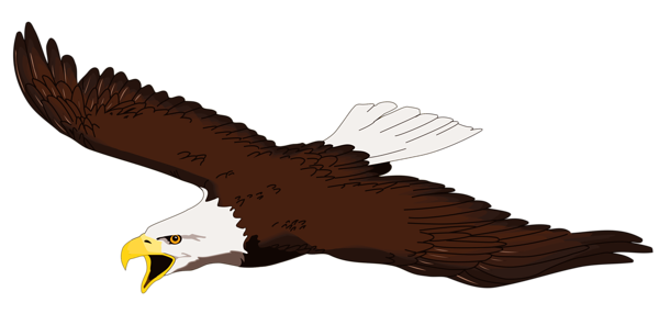 600x296 Golden Eagle Clipart Animation