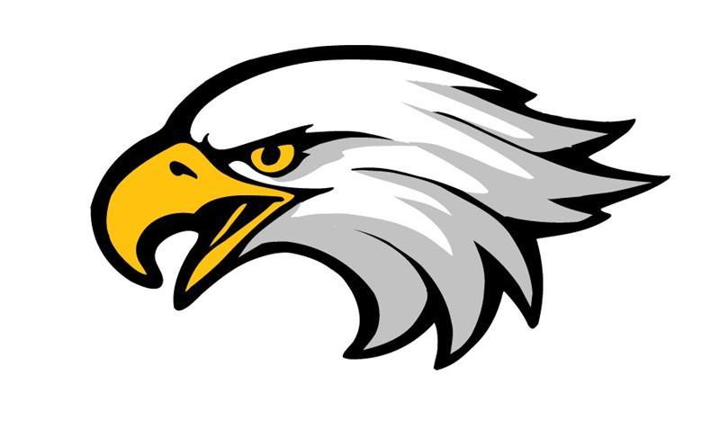 800x487 Logo Clipart Eagle