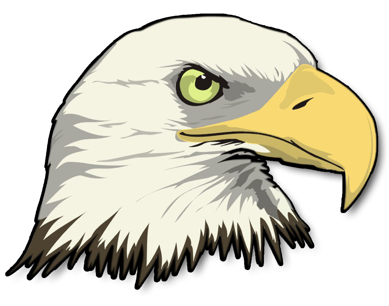 1267x998 Bald eagles clipart