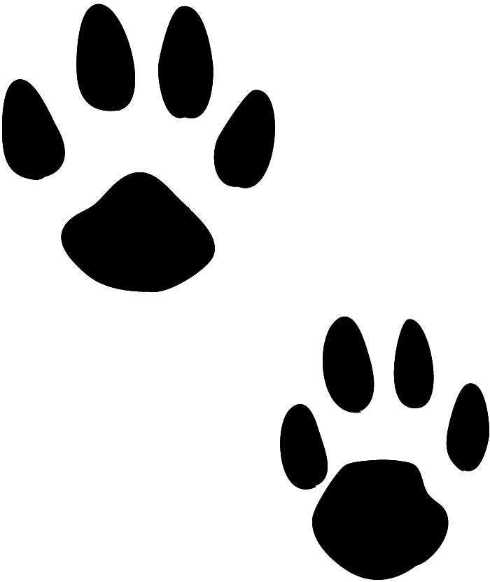 700x831 Fox Clipart Footprints