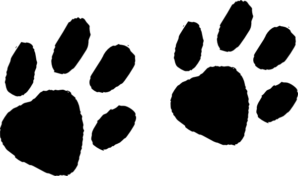 600x355 Raccoon Clipart Footprint