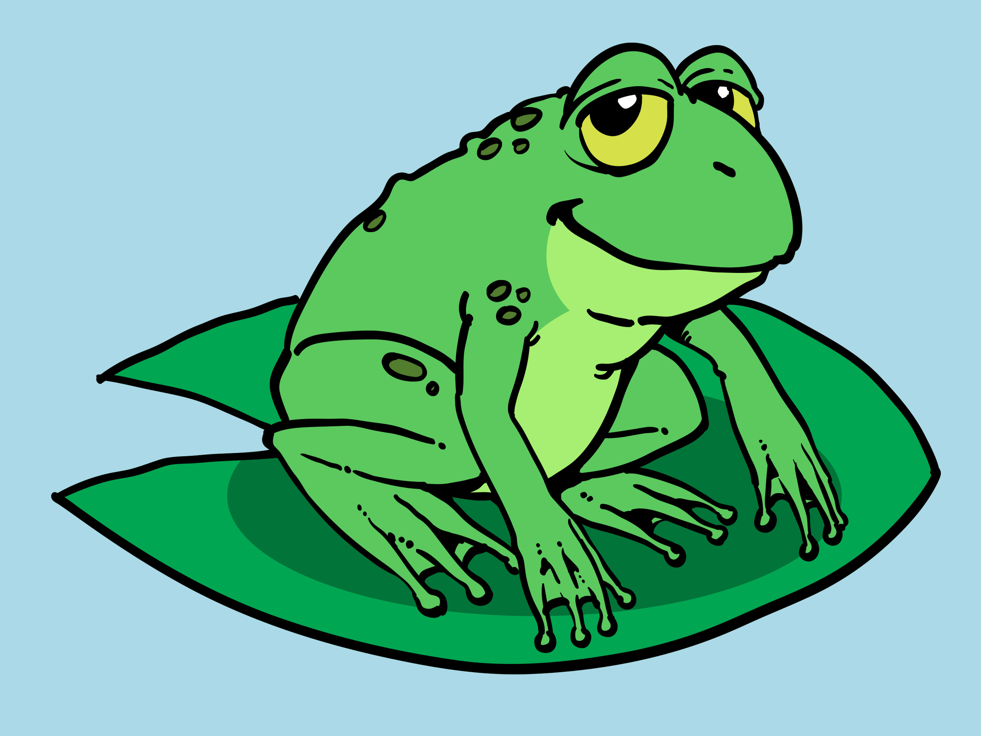 3200x2400 How To Draw A Cartoon Frog 10 Steps (With Pictures)