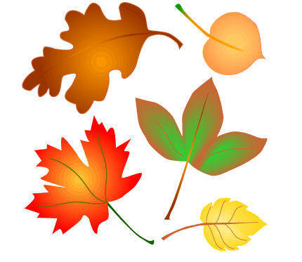 430x373 Graphics For Falling Leaves Animated Graphics