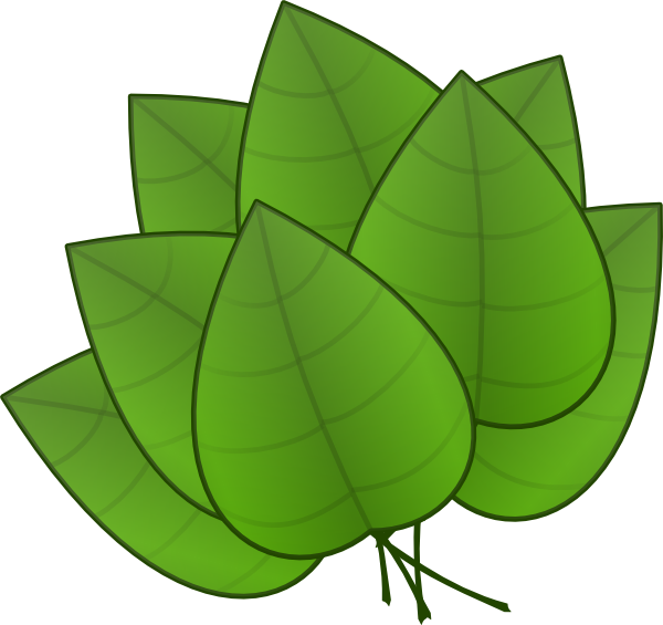 600x565 Leaves Clip Art