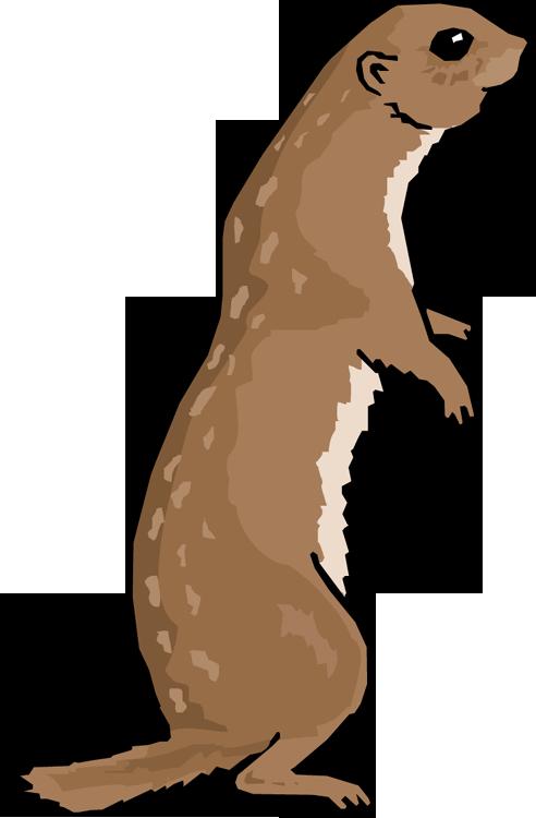 492x750 Otter Clipart River Otter