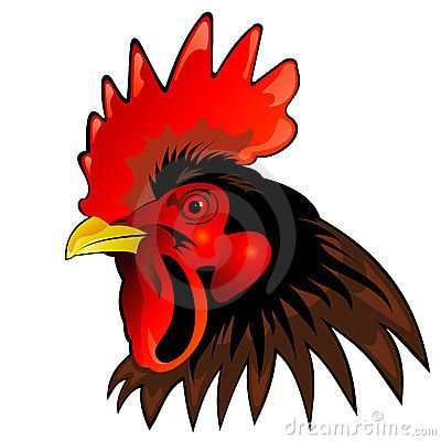 animated rooster free download best animated rooster on clipartmag com
