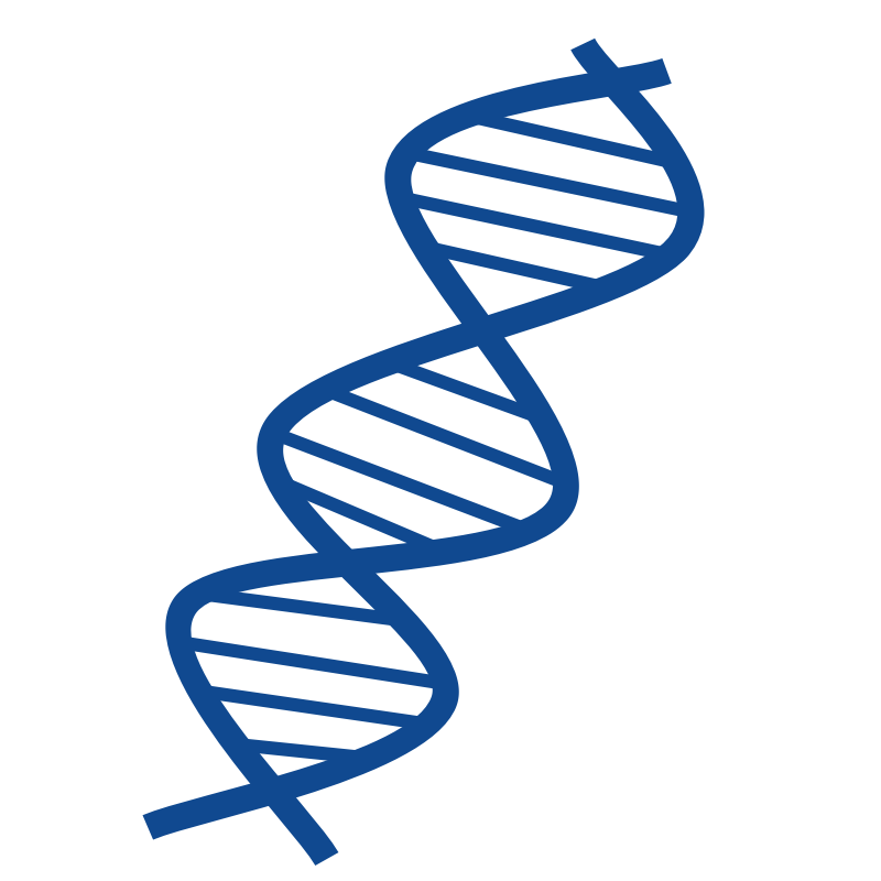800x800 Animated Dna Clipart