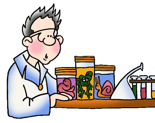 501x398 Science Education Clipart
