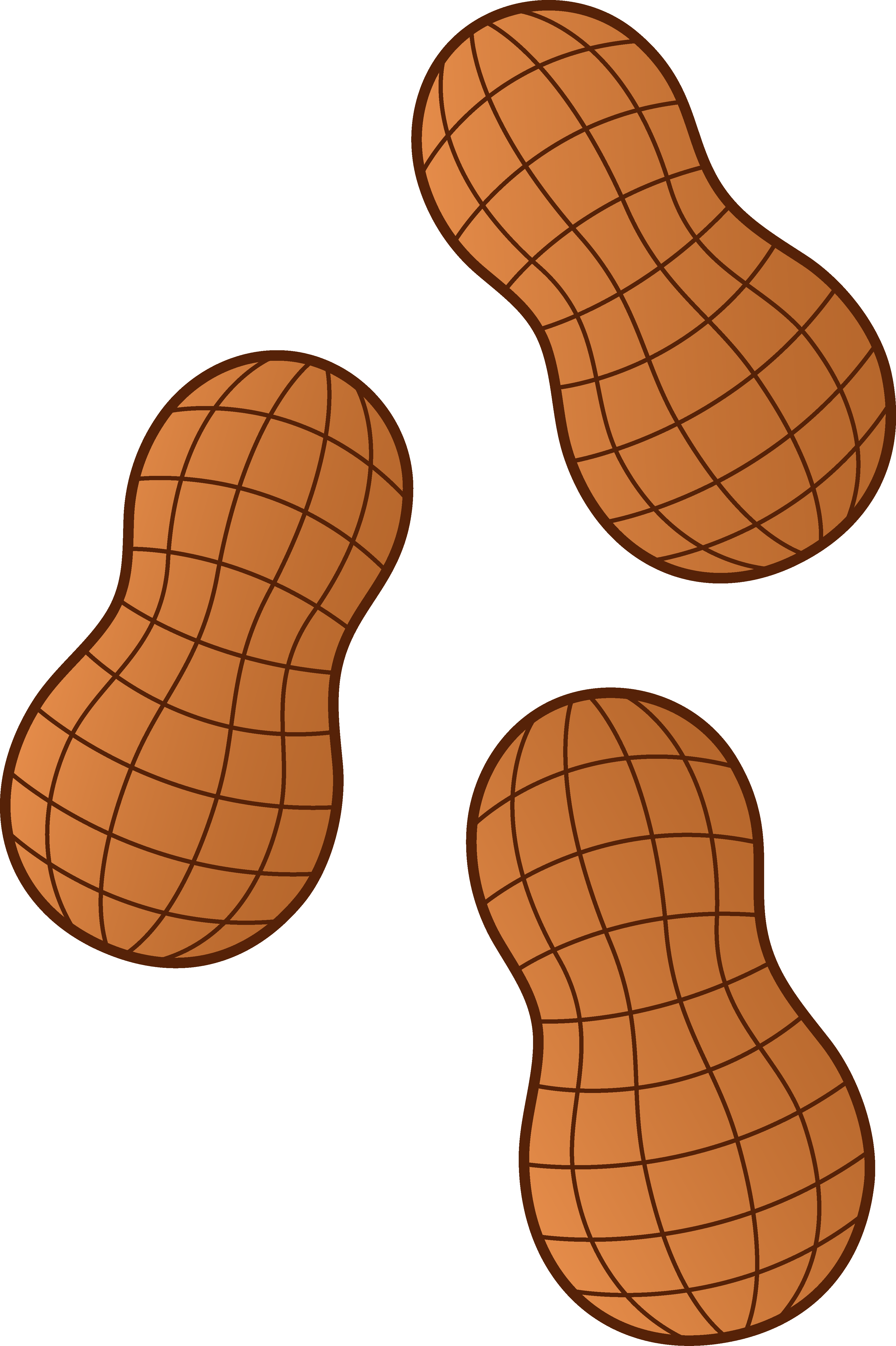 3567x5357 Clipart Peanuts