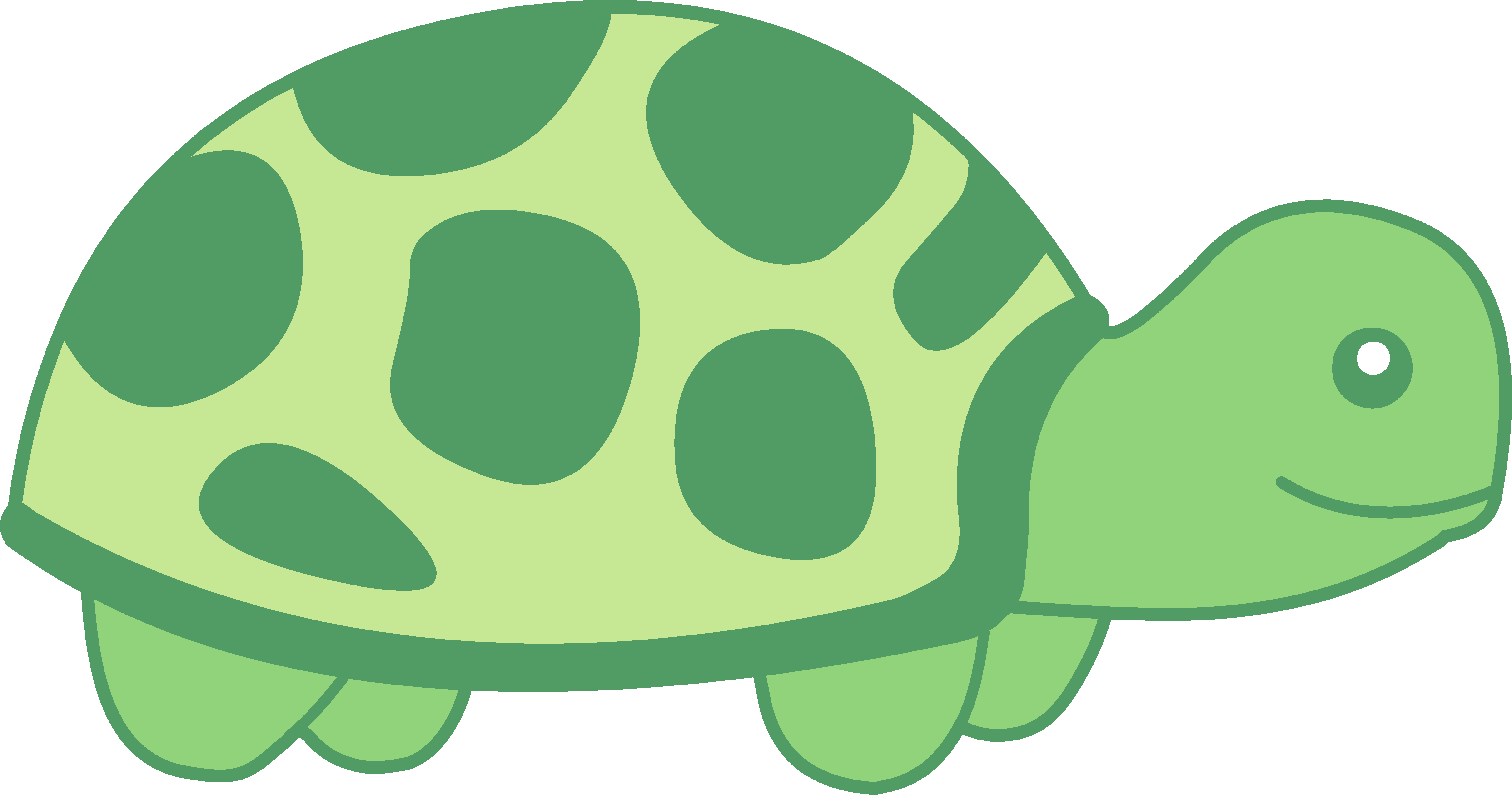 Animated Turtle Clipart Free Download Best Animated Turtle Clipart