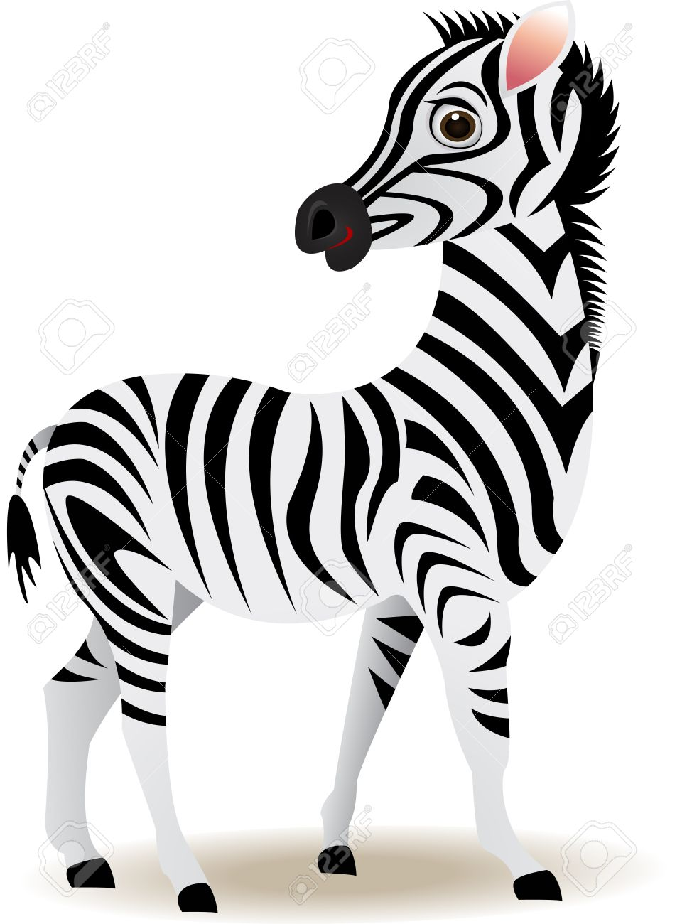967x1300 Herbivorous Clipart Zebra Animal