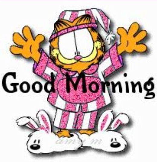 520x538 Best Good Morning Photos Ideas Good Morning