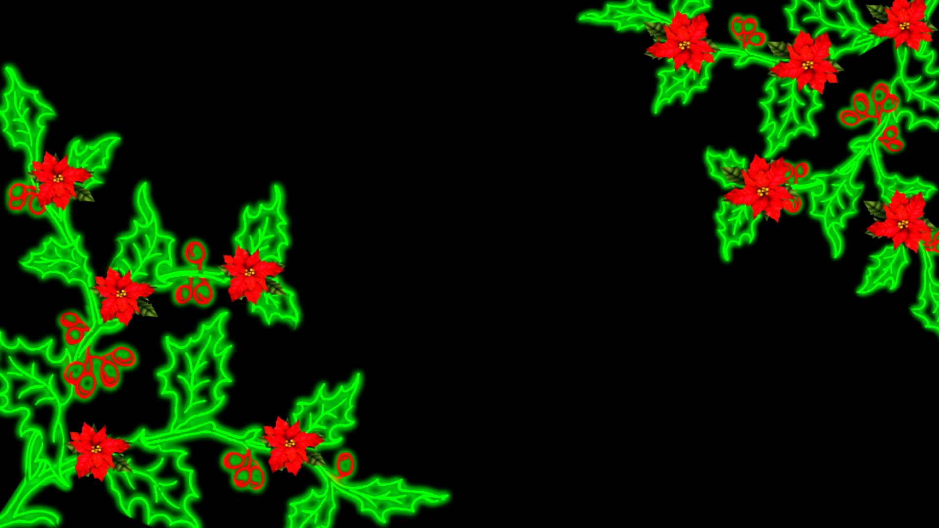1920x1080 Christmas Flourish Holly And Poinsettia Animation Free Download