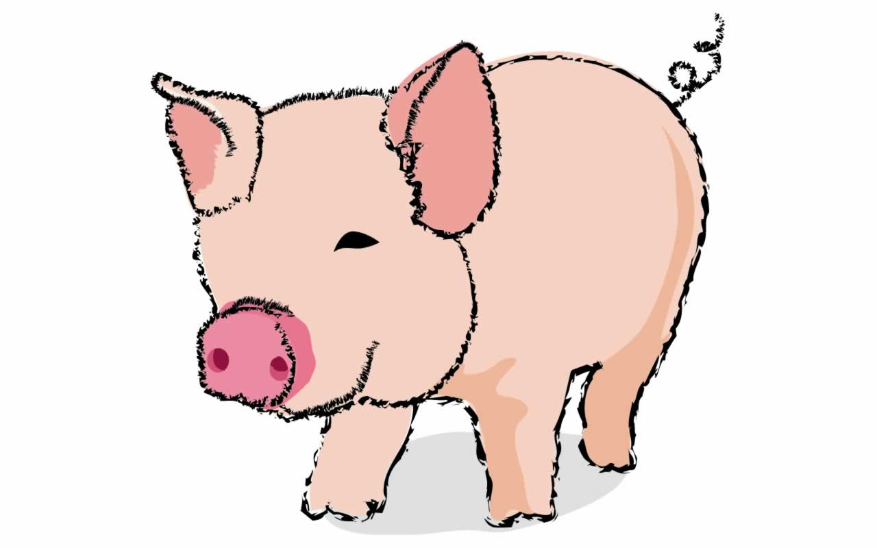 1280x800 Pig Clipart Animated