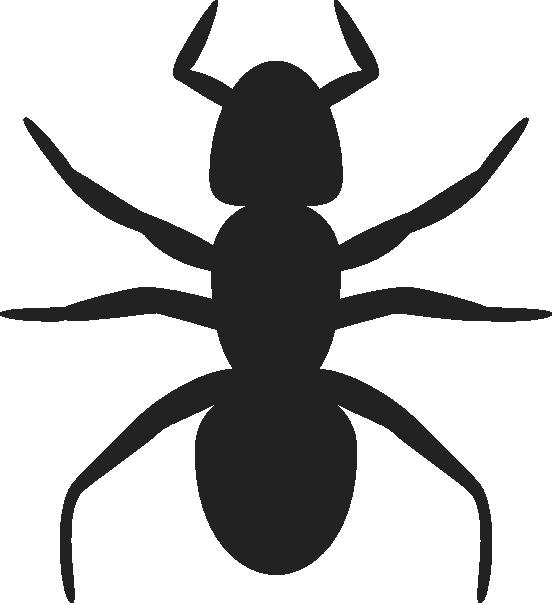 552x603 Ant Clip Art