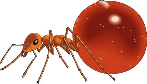 500x288 Honeypot ant clip art download image