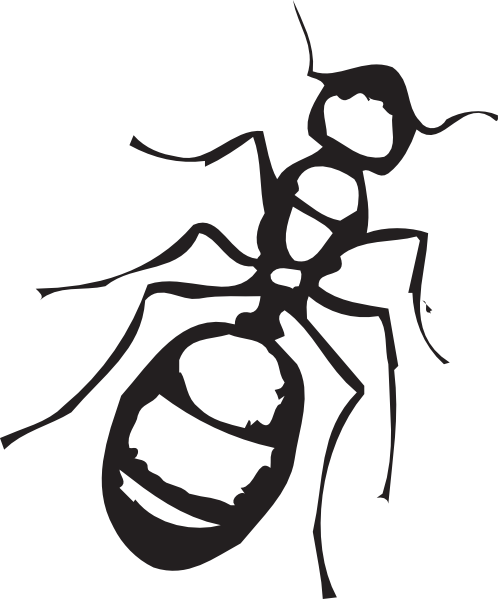 498x599 Ant black and white clip art