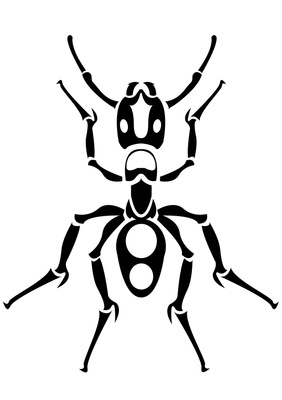 282x400 Drawn Ants Black And White