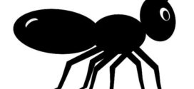 272x125 Ant Clipart Black And White Free Images