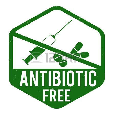 450x450 Antibiotic Free Grunge Rubber Stamp On White Background, Vector