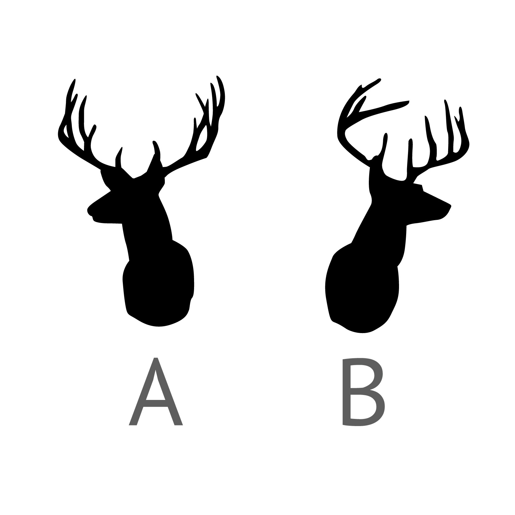 1656x1656 Stag Clipart Outline