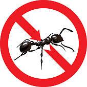 170x170 Colony Ants Clip Art
