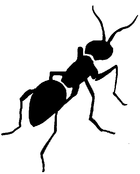448x555 Ant Clipart Black And White Free Images