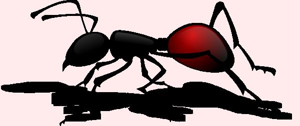 600x253 Ant Clip Art