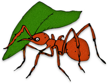 377x293 Free Ant Clipart Black Ants 2