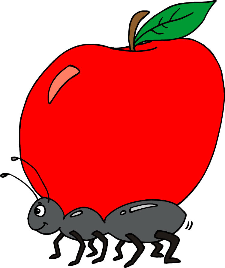 750x890 Ant Clipart Apple