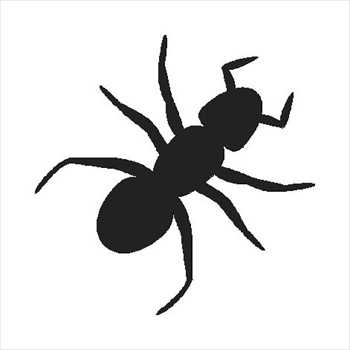 350x350 Free Ants Clipart